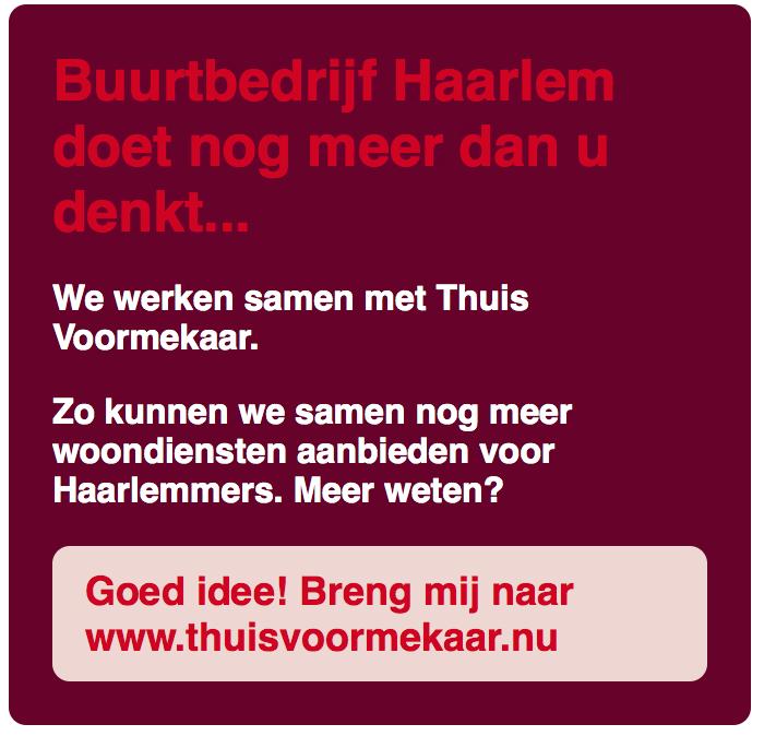 Buurtbedrijf Haarlem doet meer dan u denkt…
